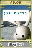 yukiusahike01